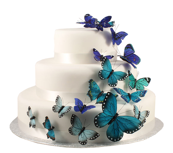Hand Painted Something Blue Butterfly Cake Decoration