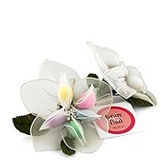 Jordan Almonds Lily Favor