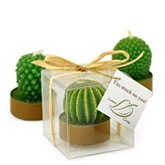 Mini Cactus Candle Favor Box