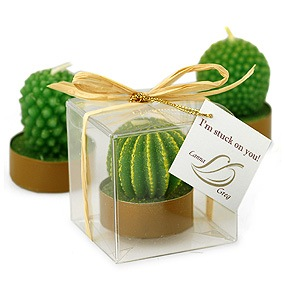 I'm Stuck On You Cactus Candle Favor*