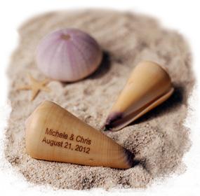 Personalized Virgo Cone Sea Shells