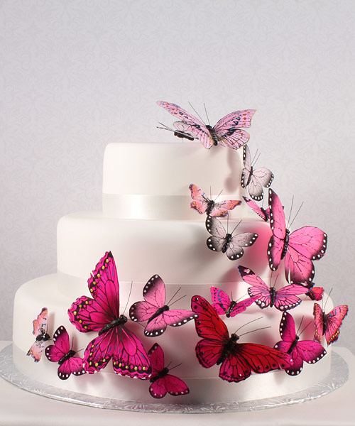 hand painted romantic pink butterfly cake decoration - Cake Decoration