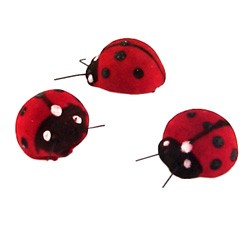 Lady Bugs (Set of 12)