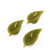 Mini Green Leaf Candles - Set of 6