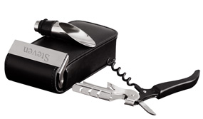 Stainless Steel Concord Travel Wine Set