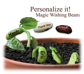 Personalized Magic Wishing Bean Favor