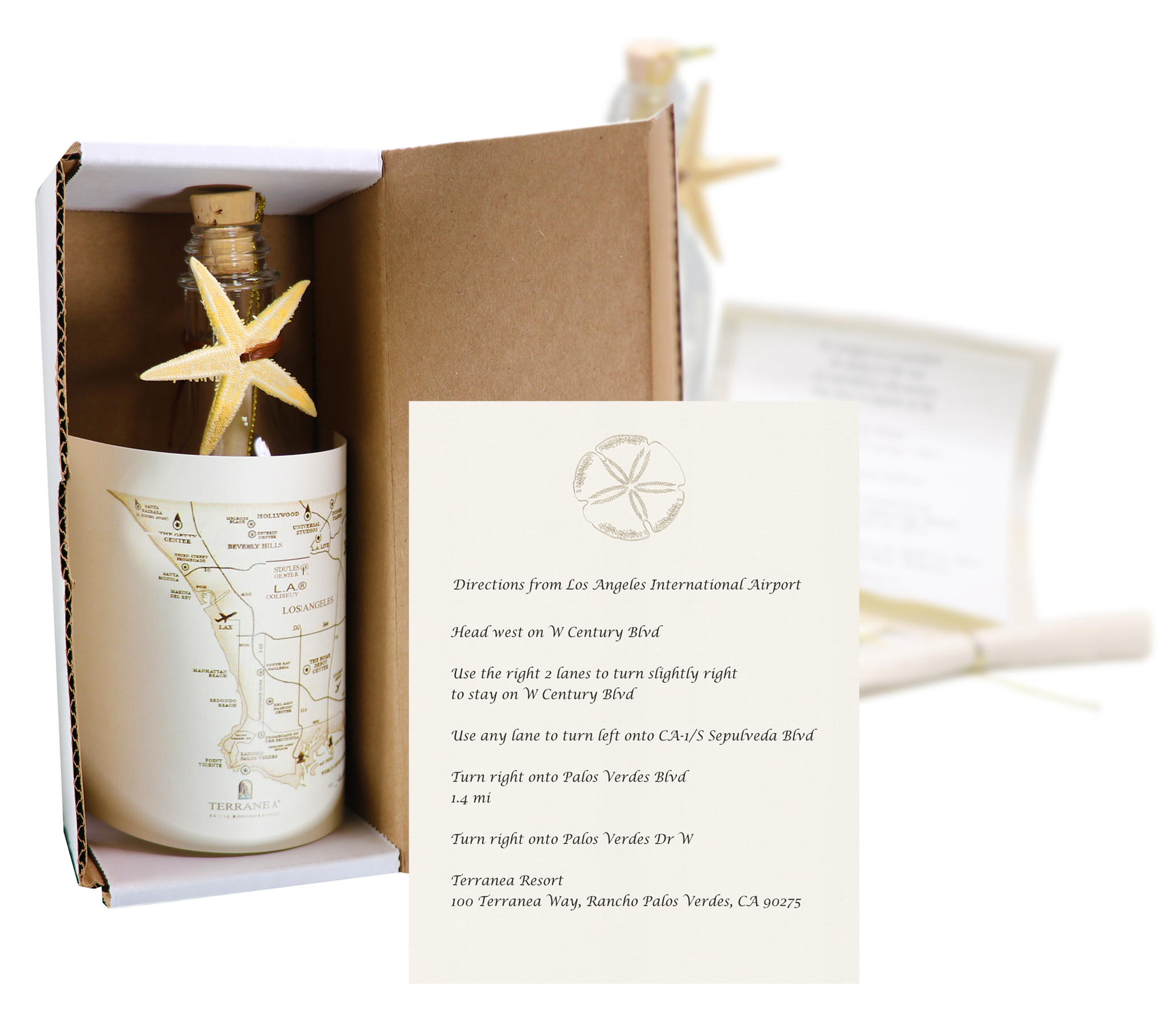 Starfish Wedding Invitation In A Bottle: HansonEllis.com