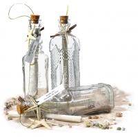 send a message invitation in a bottle hansonellis com