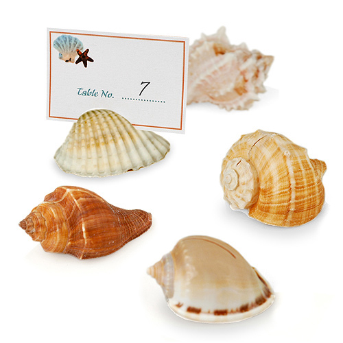 Beach Seashell Place Card Holders (Set of 12)