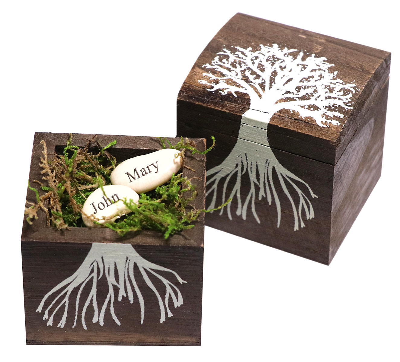 Growing Together Wishing Beans in a Tree Wood Box + Green Grass Moss