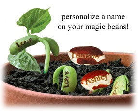 Personalized Plantable Wishing Beans