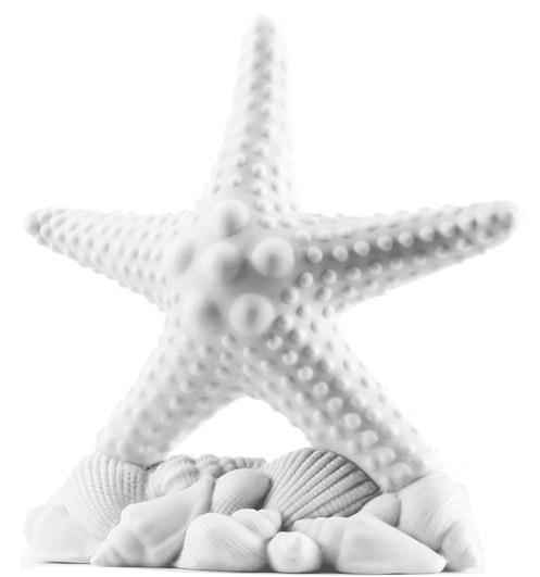 Pure White Beach Starfish Wedding Cake Topper: HansonEllis.com