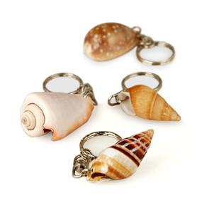 Natural Seashell Keychain Hansonellis Com