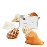 Seashell Placecard Holders (Set of 6)