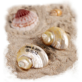 Personalized Turban Shimmering Seashells